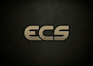ECS GOLD LOGO ON LEATHER 2508 resized